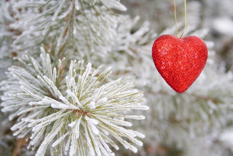 Solitair hart stock afbeelding