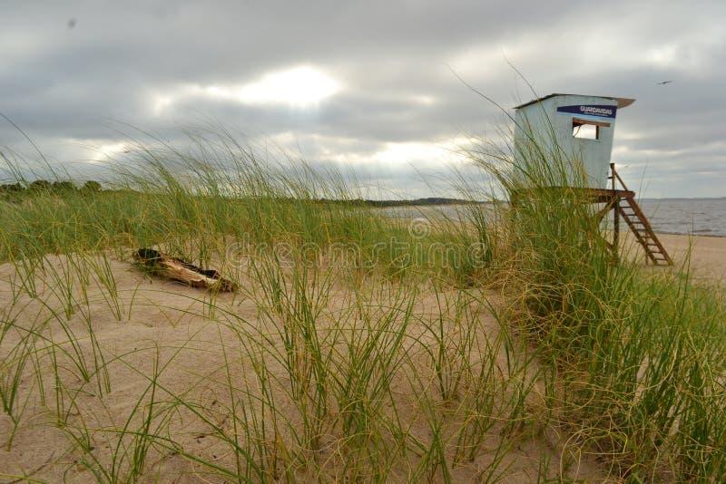 Solitaria de Playa - San Jose - Uruguay fotografía de archivo libre de regalías