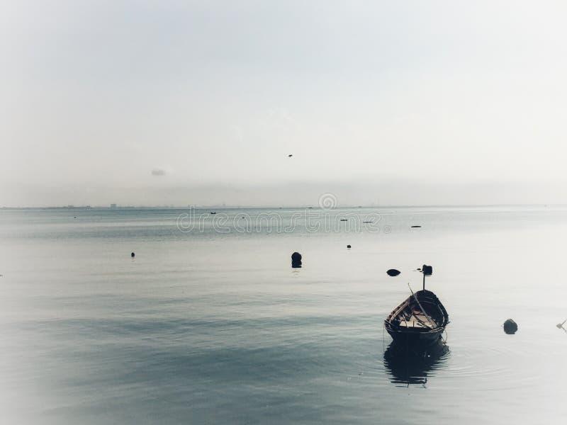 solitario fotografie stock libere da diritti