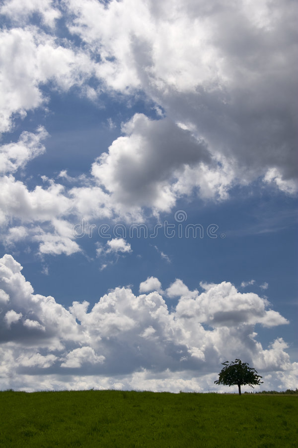 Download Solitary stock image. Image of hayfield, windstorm, blue - 6637371