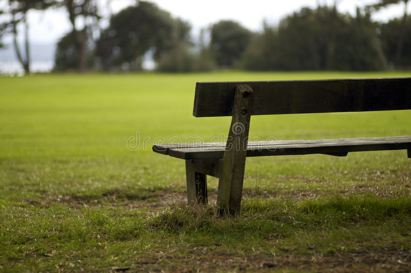 Solitary bench in park royalty free stock photos
