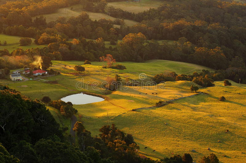 Countryside solitary farm with pond by sunset. A solitary Australian farm with grazing cows - captured at that magical moment when the sun sets and the meadows royalty free stock image
