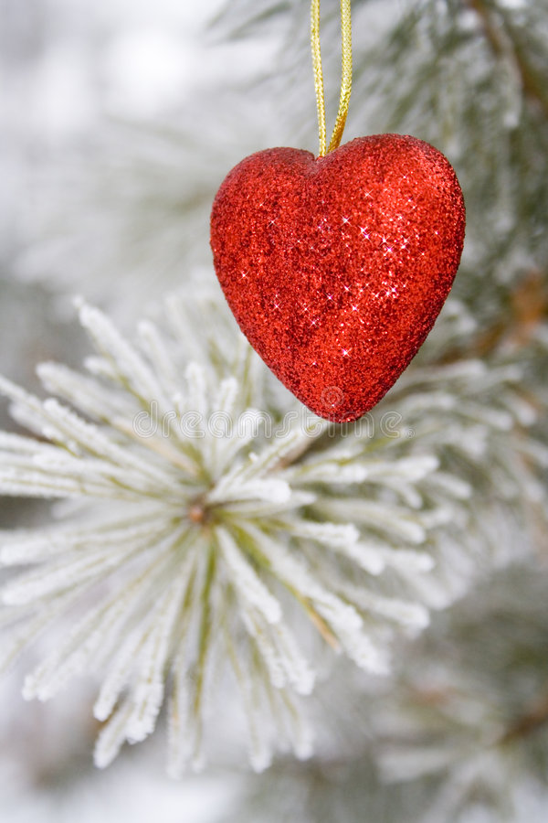 Solitary heart stock photography