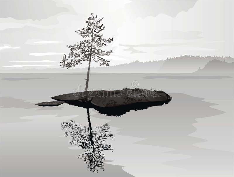 Solitary pine on rock. Vector illustration royalty free illustration