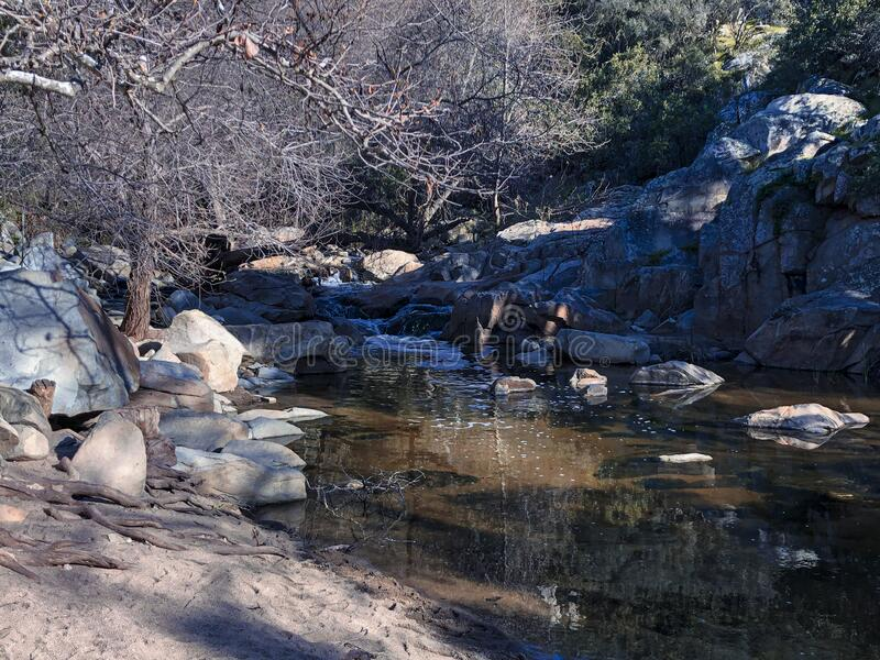 Solitary shore of a peaceful creek royalty free stock photography