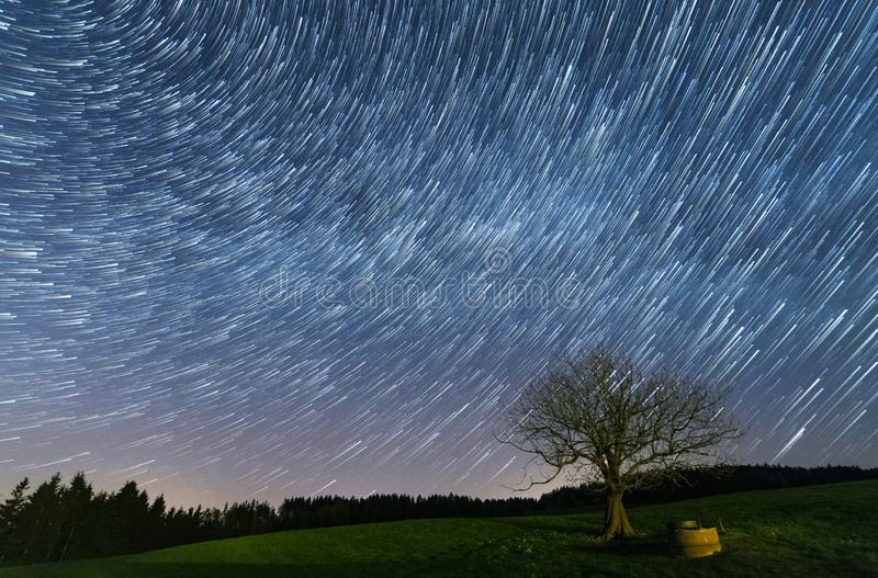 Tree under the startrails stock images