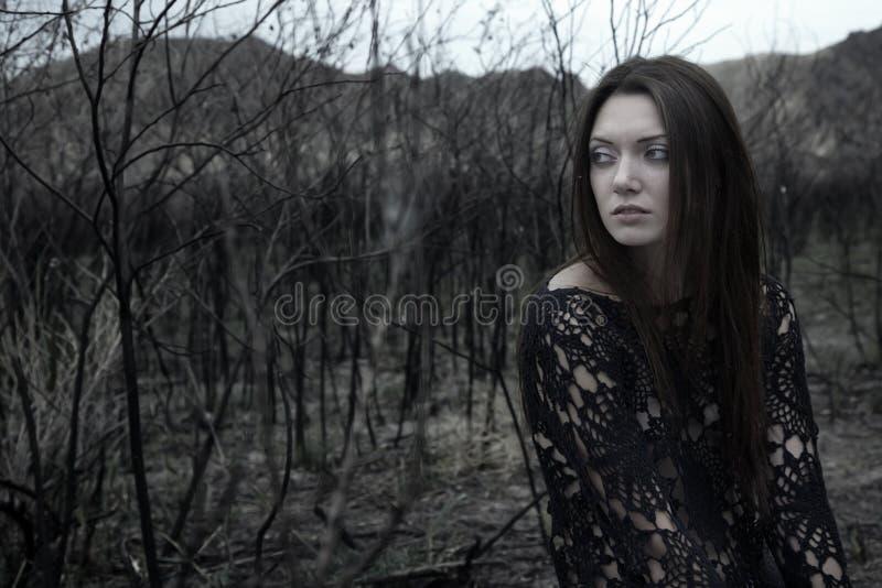 Download Solitude in the bush stock photo. Image of depression - 10802716