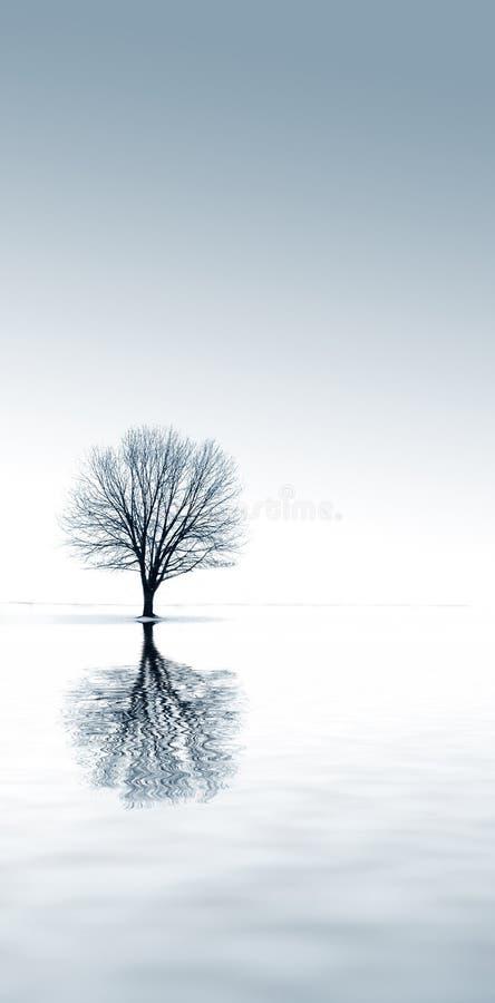 Solitude de l'hiver images stock
