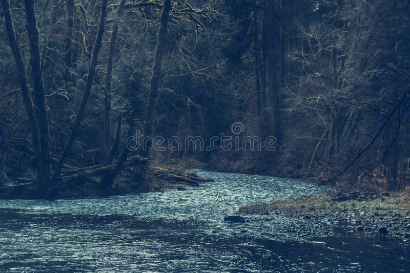 In a solitude royalty free stock photography