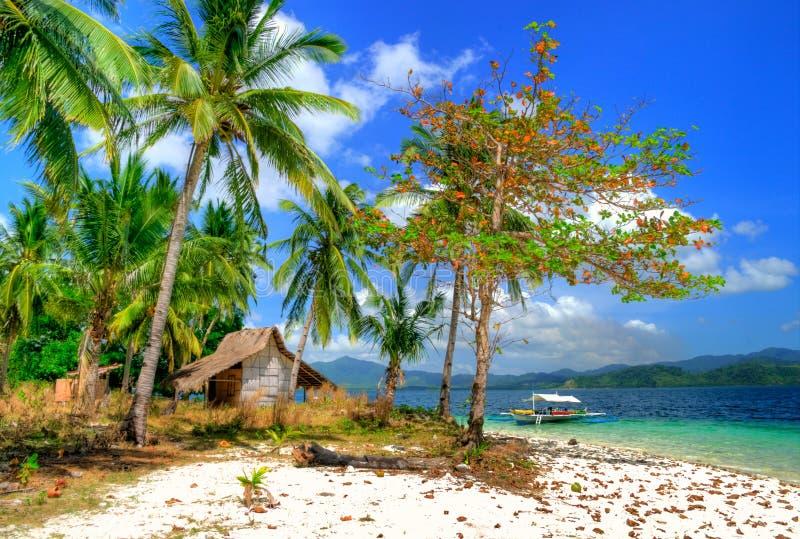 solitude tropicale photos libres de droits