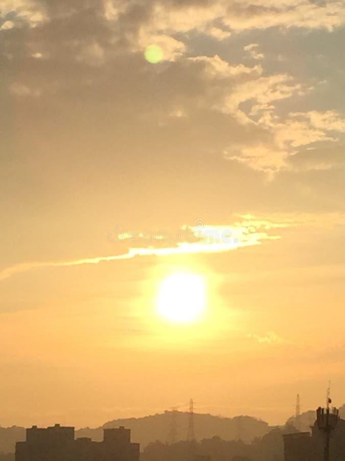 solljus royaltyfri bild