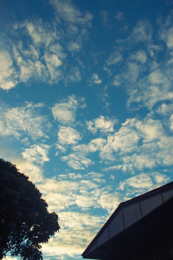 solljus för blå sky för bakgrund royaltyfri foto