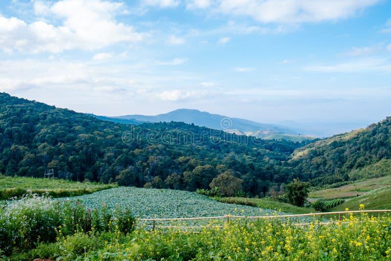 solljus för område för sammansättningsberg naturligt fotografering för bildbyråer