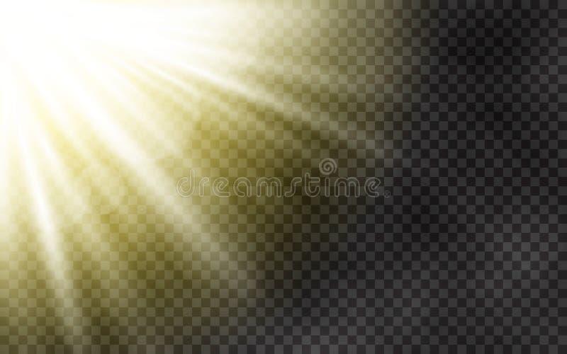 Solljus med morgondimma på genomskinlig bakgrund Vårmall med gula strålar Ljus effekt för sol- och linssignalljus stock illustrationer