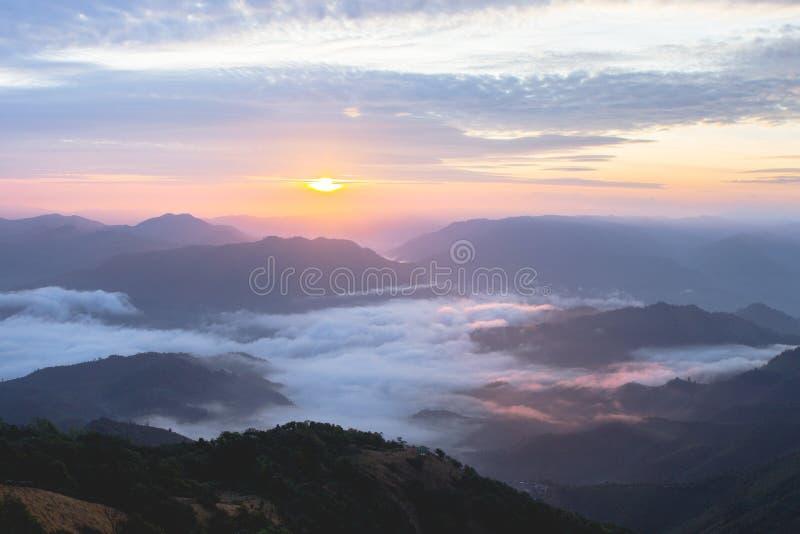 Solljus och mist för bra morgon i morgontid royaltyfria bilder