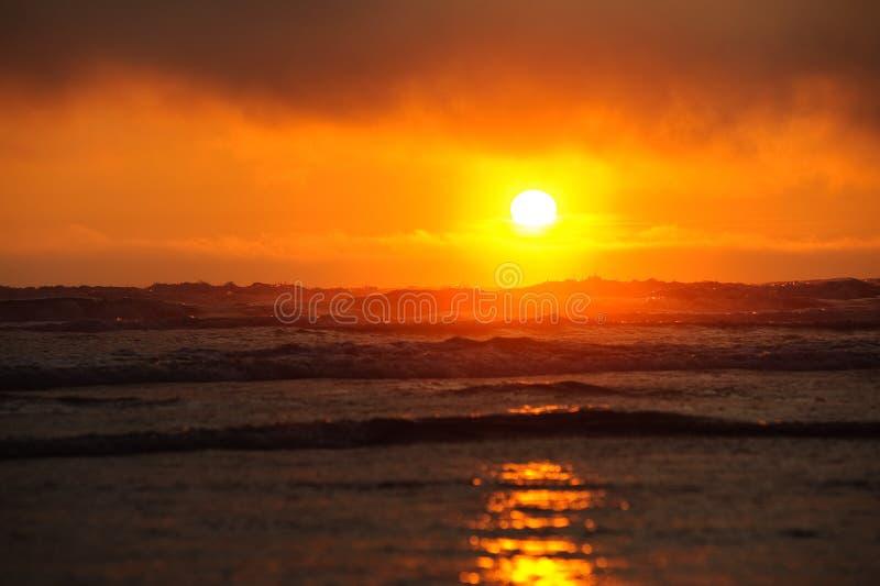 Solljus på den Kalaloch stranden royaltyfri fotografi