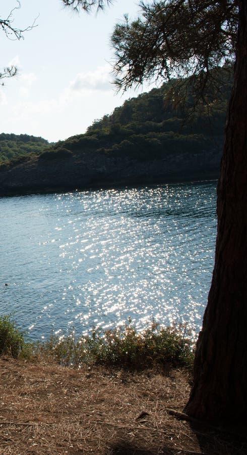 Solljus som trycker på sjövattnet royaltyfria foton