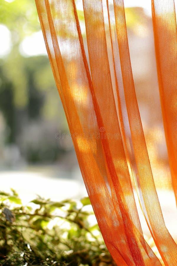 Solljuset fördelar till och med den orange tyllgardinen arkivbild