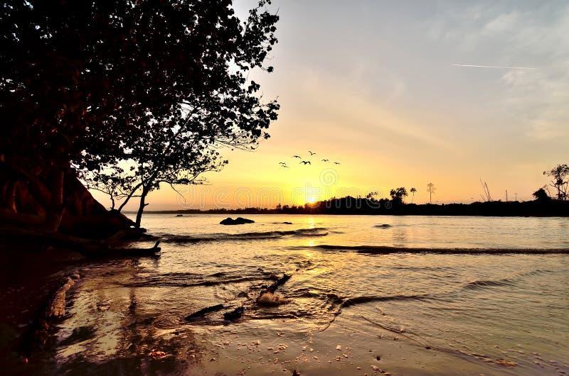 Solnedgångögonblick arkivbild