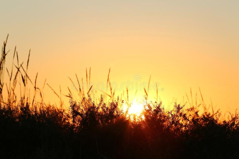 Solnedgångörter royaltyfria bilder
