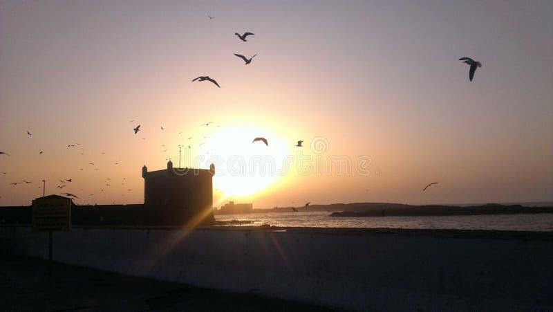 Solnedgång över Atlanticet Ocean i Essaouria royaltyfri bild