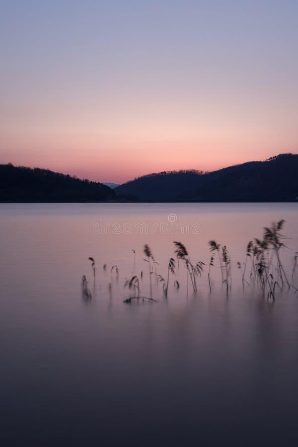 Solnedgång över backen i Gyeongju, Sydkorea royaltyfria foton
