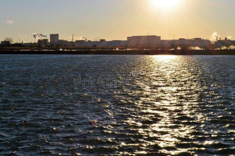 Solnedgång över bransch royaltyfri fotografi