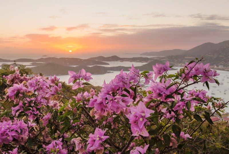 Solnedgång över Charlotte Amalie St Thomas royaltyfri foto