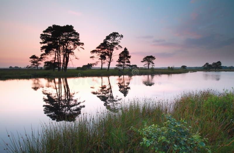Solnedgång över den lösa sjön i sommar royaltyfria foton