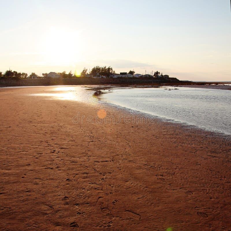 Solnedgång över den sandiga stranden royaltyfri bild