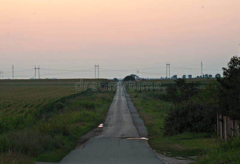 Solnedgång över den tomma bygdvägen, sommarlandskap arkivbild