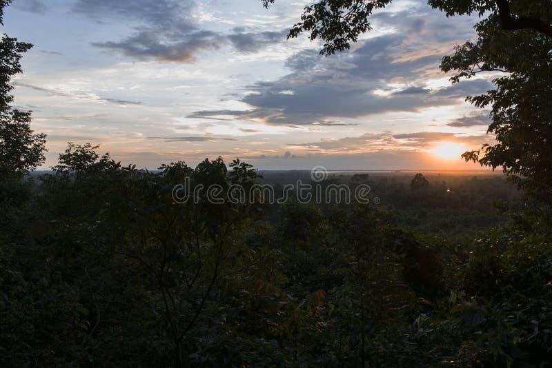 Solnedgång över den tropiska djungelskogen i Siem Reap Härligt sceniskt sommarsolljus i Cambodja arkivfoto