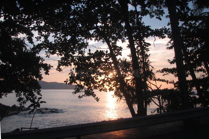 Solnedgång över det Andaman havet i Phuket, Thailand Sikt av solnedgången till och med träden på kusten fotografering för bildbyråer