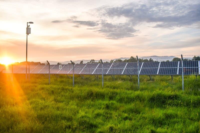 Solnedgång över en photovoltaic kraftverk med photovoltaic enheter för förnybara energikällor på fältet Solenergiutveckling royaltyfri bild