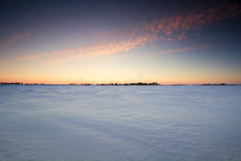 Solnedgång över ett djupfryst snö täckt fält. royaltyfri bild