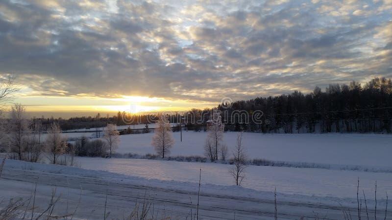 Solnedgång över härlig snö täckt fält arkivbilder