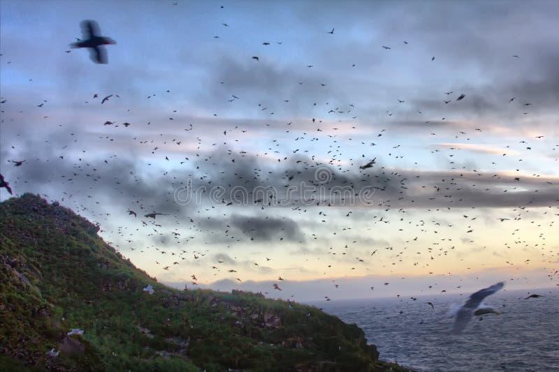 Solnedgång över havöar 1 Aleuts-kommendörkapten ökant Stillahavs- hav royaltyfri foto