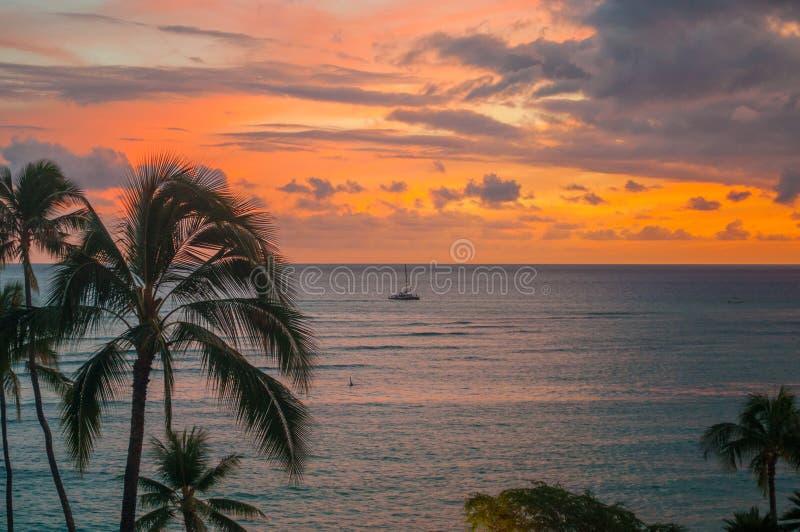 Solnedgång över havet med palmträd i Oahu, Hawaii arkivbild