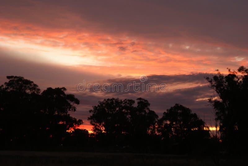 Solnedgång över himlen arkivbild