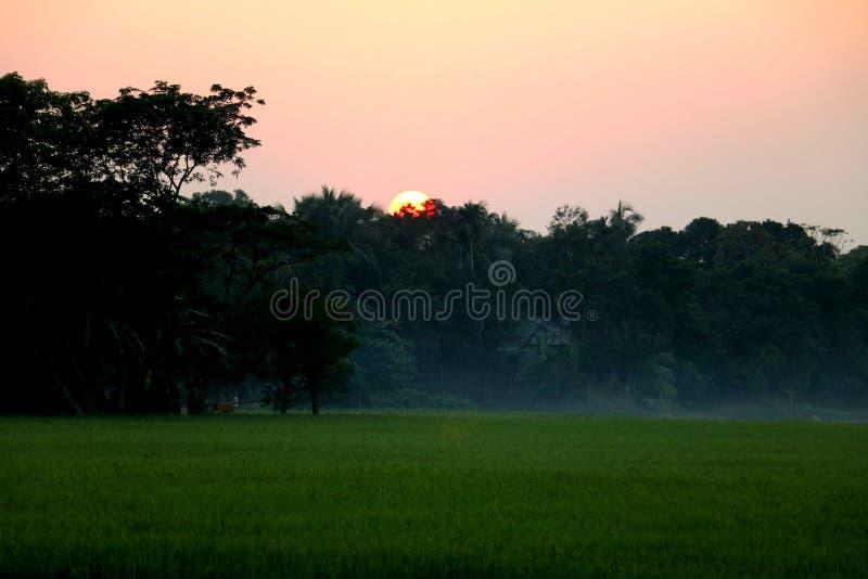 Solnedgång över by inklusive dimma och grönt fält arkivbilder