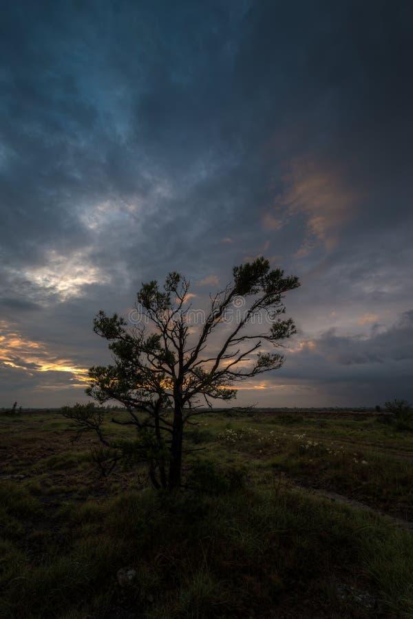 Solnedgång över kalkstenheden Alvaret, Ã-och royaltyfria foton