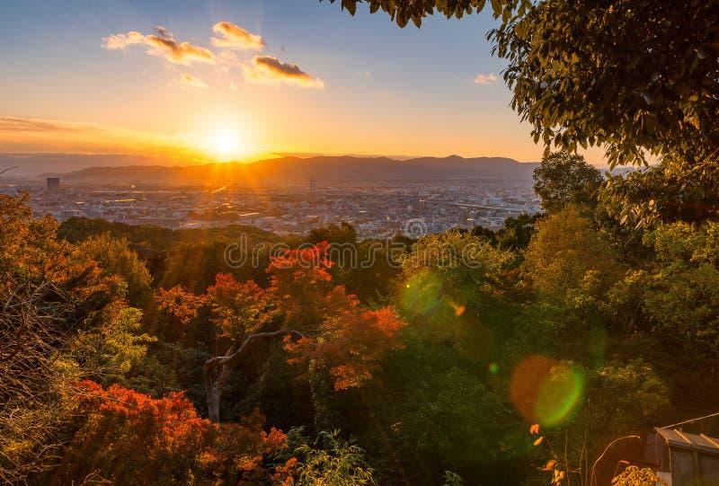 Solnedgång över Kyoto med en röd mapple royaltyfria bilder