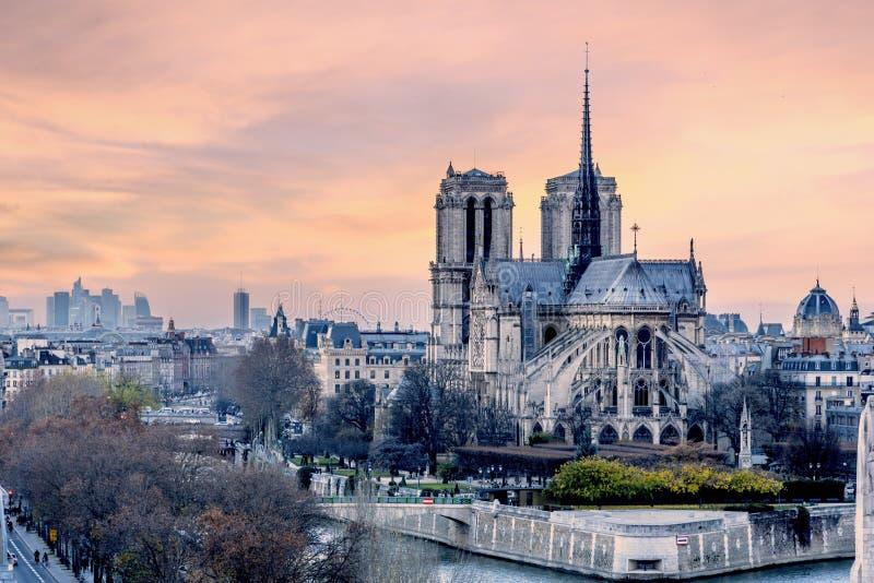 Solnedgång över Notre Dame de Paris arkivfoto