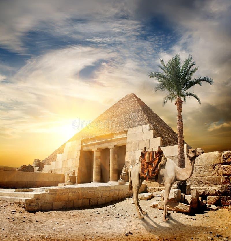 Solnedgång över pyramiden royaltyfri bild