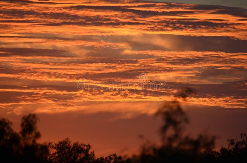 Solnedgång över ranchen royaltyfri fotografi