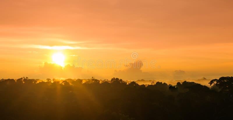 Solnedgång över regnskog vid Amazon River i Brasilien royaltyfria foton