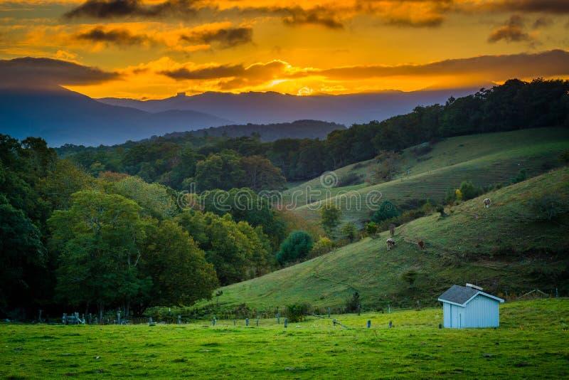 Solnedgång över Rolling Hills och lantgårdfält på Moses Cone Park på royaltyfri bild