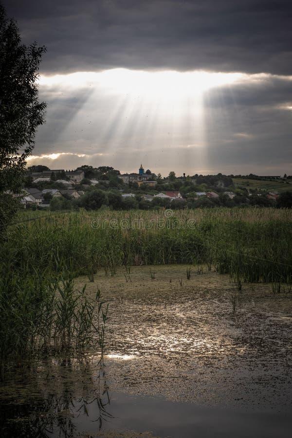 solnedgång över swampland med solstrålar arkivbild