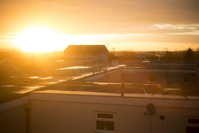 Solnedgång över taken av husen royaltyfri bild
