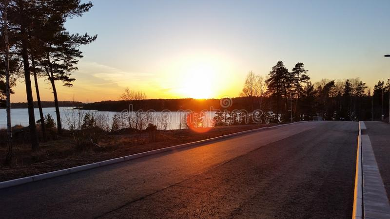 Solnedgång över träd royaltyfria foton